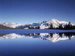 California, Sierra Nevada, Yosemite National Park, Mammoth Peak Reflect in a Tarn by Christopher Talbot Frank