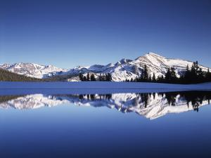 California, Sierra Nevada, Yosemite National Park, Mammoth Peak Reflect in a Tarn by Christopher Talbot Frank