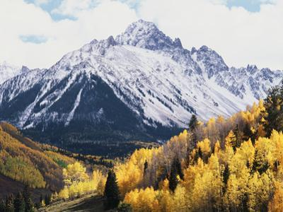 Colorado, San Juan Mts, Fall Colors of Aspens Below Mount Sneffels by Christopher Talbot Frank