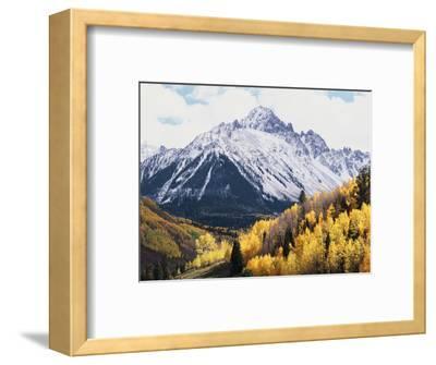 Colorado, San Juan Mts, Fall Colors of Aspens Below Mount Sneffels