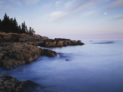Maine, Acadia National Park, Moonset over the Atlantic Ocean at Sunrise