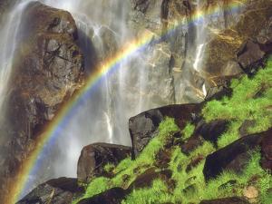Rainbow at the Base of Bridal Veil Falls, Yosemite National Park, California, USA by Christopher Talbot Frank