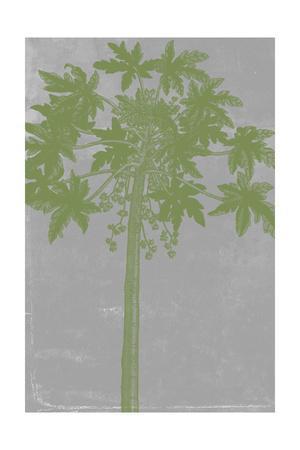 https://imgc.artprintimages.com/img/print/chromatic-palms-ix_u-l-pyvrqb0.jpg?p=0
