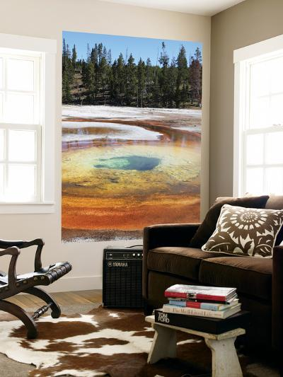 Chromatic Pool Hot Spring, Upper Geyser Basin Geothermal Area, Yellowstone National Park, Wyoming-Stocktrek Images-Wall Mural