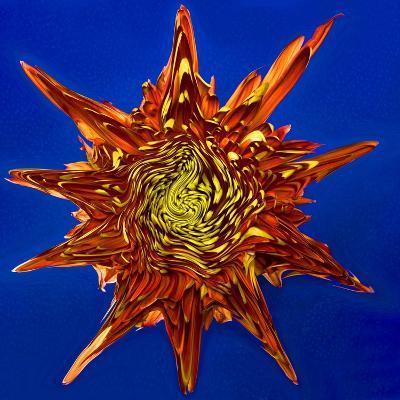 Chrysanthemum Explosion-Charles Bowman-Photographic Print