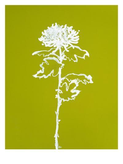 Chrysanthemum I-Filippo Ioco-Premium Giclee Print