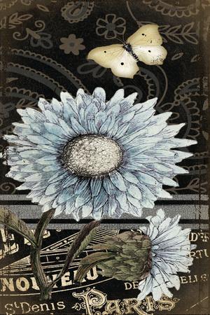 https://imgc.artprintimages.com/img/print/chrysanthemum_u-l-pwbqel0.jpg?p=0