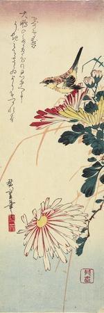 https://imgc.artprintimages.com/img/print/chrysanthemums-and-a-shrike-1830-1858_u-l-puue4m0.jpg?p=0