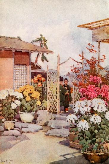 Chrysanthemums, Kyoto-Ella Du Cane-Giclee Print