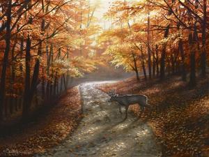 Autumn Bliss by Chuck Black