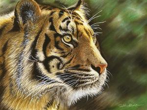 Into the Jungle by Chuck Black
