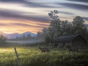 Late Summer by Chuck Black