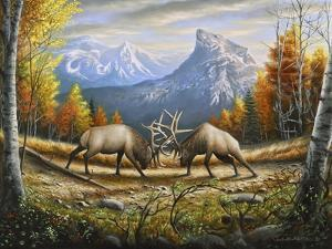 The Wild Frontier by Chuck Black