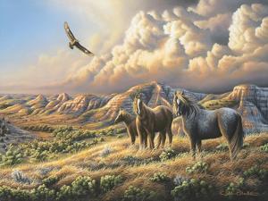 Under Wild Skies by Chuck Black