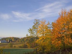 Autumn Colors accent farm buildings near Chippewa Falls, Wisconsin, USA by Chuck Haney