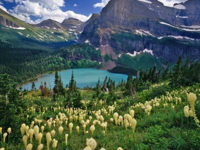 Beargrass above Grinnell Lake, Many Glacier Valley, Glacier National Park, Montana, USA by Chuck Haney