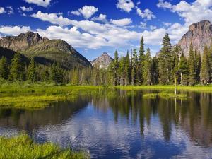 Beaver Pond in Two Medicine Valley, Glacier National Park, Montana, Usa by Chuck Haney