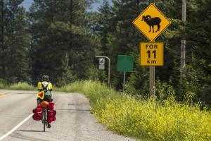 Biking, Adventure Cycling Glacier Waterton Tour, Fernie, British Columbia by Chuck Haney