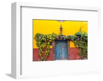 Decorative Doo on the Streets of San Miguel De Allende, Mexico