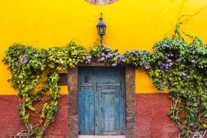 Decorative Doo on the Streets of San Miguel De Allende, Mexico by Chuck Haney