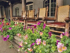 Flowers and Wooden Chairs at Lake McDonald Lodge, Glacier National Park, Montana, USA by Chuck Haney