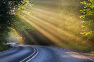 Fog Rays over Pierre Stocking Drive in Sleeping Bear National Lakeshore Near Empire, Michigan, Usa by Chuck Haney