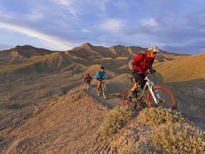 Mountain Bikers on the Zippy Doo Dah Trail in Fruita, Colorado, Usa