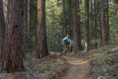 Mountain Biking on the Whitefish Trail, Montana, USA