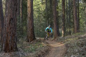 Mountain Biking on the Whitefish Trail, Montana, USA by Chuck Haney