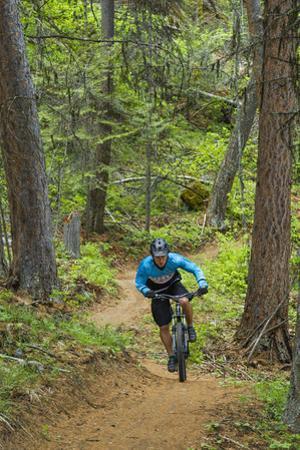 Mountain Biking the Whitefish Trail Near Whitefish, Montana, USA