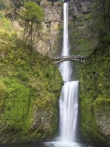Multnomah Falls, Columbia Gorge National Scenic Area, Oregon, USA by Chuck Haney