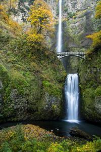 Multnomah Falls in the Columbia Gorge Scenic Area, Oregon, USA by Chuck Haney