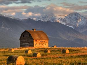 Old Barn Framed By Hay Bales, Mission Mountain Range, Montana, USA by Chuck Haney