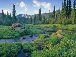 Picnic Creek in the Jewel Basin of the Swan Mountain Range, Montana, USA by Chuck Haney