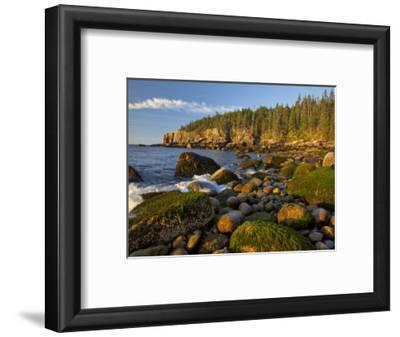 Polished Rocks at Otter Cliffs, Acadia National Park, Maine, USA