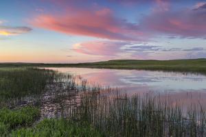 Prairie pond at sunrise in Garfield County near Jordan, Montana, USA by Chuck Haney