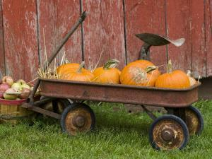 Pumpkins in Old Wagon by Chuck Haney