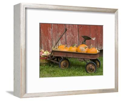 Pumpkins in Old Wagon