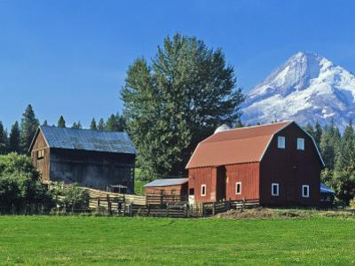 Red Barn in the Hood Valley, Mt Hood, Oregon, USA by Chuck Haney