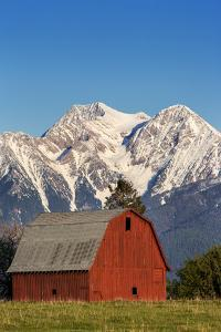 Red Barn Sits Below Mcdonald Peak in the Mission Valley, Montana, Usa by Chuck Haney
