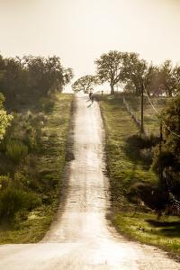 Road Cycling in Texas Hill Country Near Fredericksburg, Texas, Usa by Chuck Haney