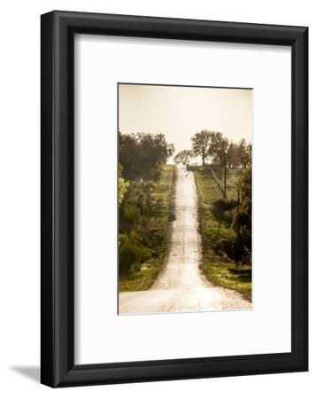 Road Cycling in Texas Hill Country Near Fredericksburg, Texas, Usa