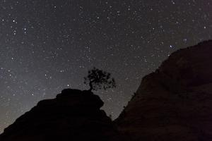 Sandstone Formation at Night in Zion National Park, Utah, USA by Chuck Haney