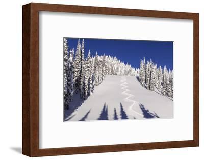 Ski Tracks Off of Lodi at Whitefish, Mountain Resort, Montana, Usa