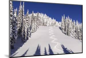 Ski Tracks Off of Lodi at Whitefish, Mountain Resort, Montana, Usa by Chuck Haney