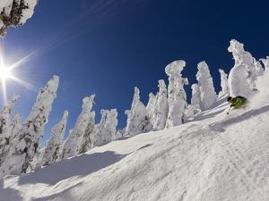 Skiing Untracked Powder at Whitefish Mountain Resort, Montana, Usa by Chuck Haney
