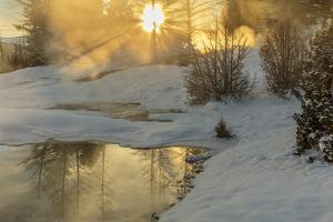Sunrise over Grassy Spring, Mammoth Hot Springs, Yellowstone National Park, Wyoming, USA by Chuck Haney