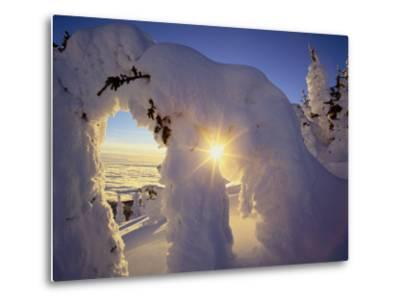 Sunset Thru the Snowghosts, Big Mountain, Whitefish, Montana, USA