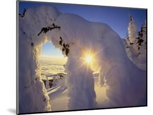 Sunset Thru the Snowghosts, Big Mountain, Whitefish, Montana, USA by Chuck Haney