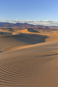 The Mesquite Sand Dunes in Death Valley National Park, California, USA by Chuck Haney